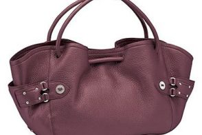 Cole Haan Lunch Tote Village Collection