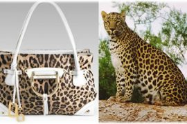 """Dolce & Gabbana """"Miss Doll"""" Shopping Tote"""