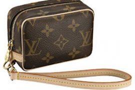 Louis Vuitton Wapity Case