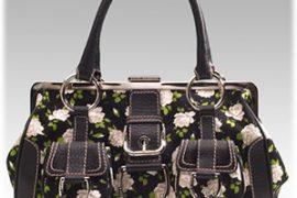 Dolce & Gabbana Floral Frame Bag