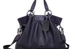 Mulberry Shimmy Tote