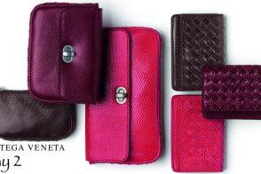 Day 2: Bottega Veneta Wallets