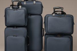 Day 10: Bottega Veneta Luggage
