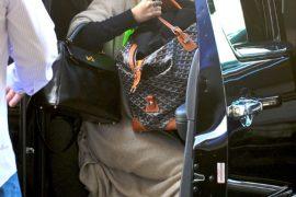 Ashley Olsen Travels With Goyard