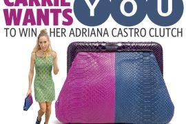Sex and the City 2 Adriana Castro Handbag Giveaway
