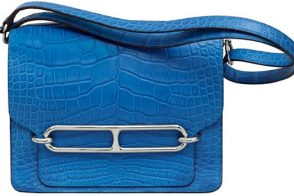 Want it Wednesday: Hermes Roulis