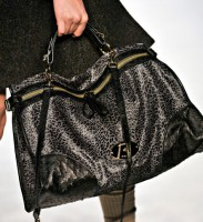 Mulberry 6