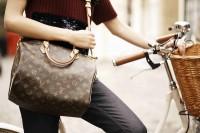 Louis Vuitton Speedy Bandouliere (1)