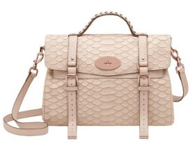 Mulberry 5