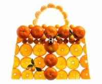 Hermes Kelly Picnic Bag (2)