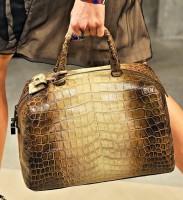 Bottega Veneta Spring 2012 Handbags (28)
