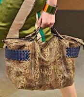 Bottega Veneta Spring 2012 Handbags (26)