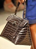 Bottega Veneta Spring 2012 Handbags (8)