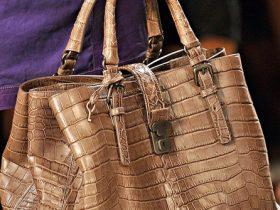 Bottega Veneta Spring 2012 Handbags (6)