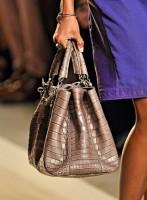 Bottega Veneta Spring 2012 Handbags (5)