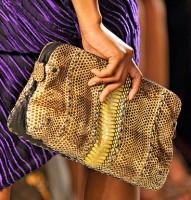 Bottega Veneta Spring 2012 Handbags (34)