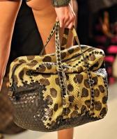 Bottega Veneta Spring 2012 Handbags (31)