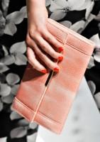 Jason Wu Spring 2012 Handbags (4)