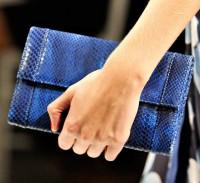Jason Wu Spring 2012 Handbags (12)