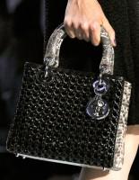 Dior Spring 2012 (5)