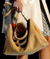 Dior Spring 2012 (1)