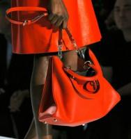 Dior Spring 2012 (8)