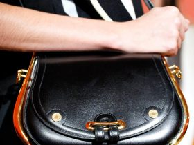 Hermes Spring 2012 handbags (11)