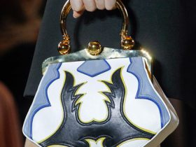 Miu Miu Spring 2012 handbags (4)