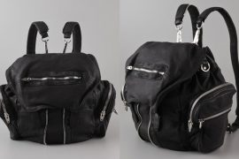 Alexander Wang's Backpack is actually quite cool