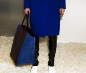Celine Pre-Fall 2012 Handbags (7)