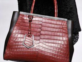 Fendi Fall 2012 Handbags (15)