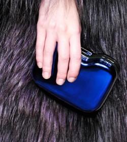 Fendi Fall 2012 Handbags (27)