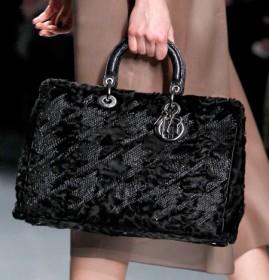 Dior Fall 2012 (13)