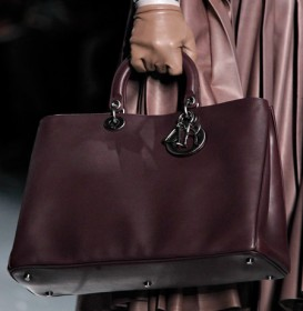 Dior Fall 2012 (8)