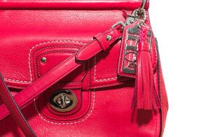 Purseonals: Coach Willis Bag