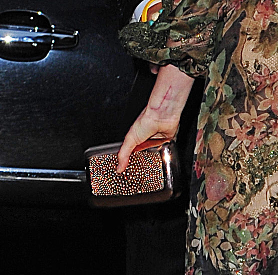Fashion style Hathaway anne carries gorgeous roger vivier clutch for girls