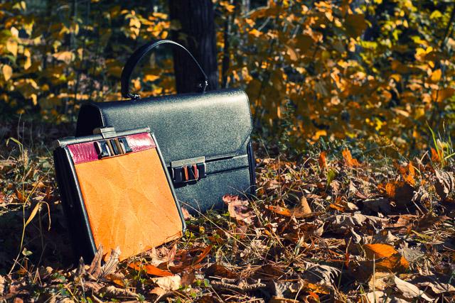 Happy Thanksgiving 2012 (1)