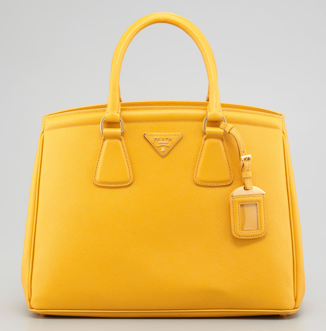 prade purses - PurseBlog Asks: What Bag Would You Buy Right Now for $2,000 ...