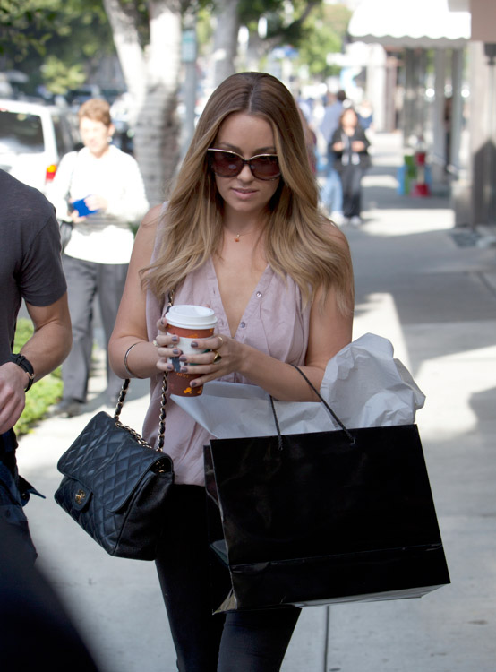 The Many Bags of Lauren Conrad (2)
