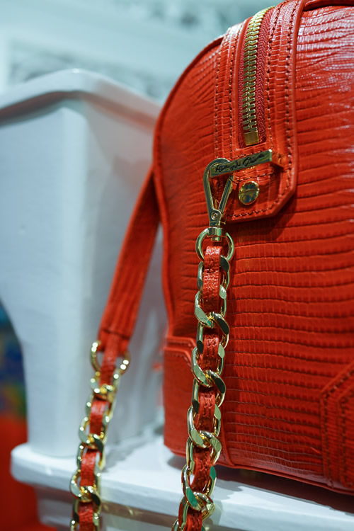 Alice and Olivia Spring 2013 Bags 7