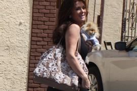 Lisa Vanderpump carries a Valentino Embroidered Flower Tote in LA (3)