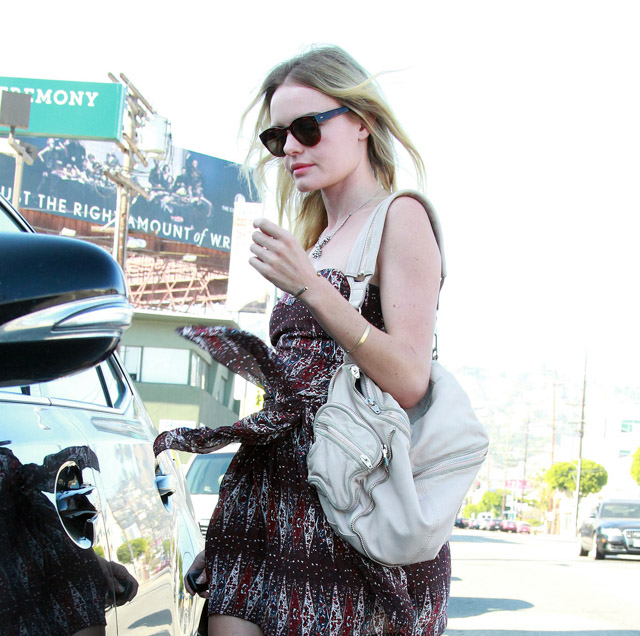 The Many Bags of Kate Bosworth (14)