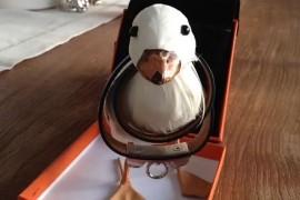 Hermes Ducky