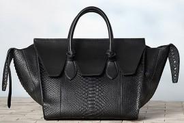 Celine Winter 2013 Handbags (29)