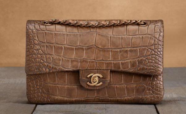Chanel Metiers d'Art 2013 Handbags (10)