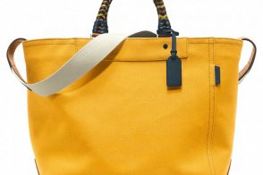 What to Carry for Fourth of July Festivities, No Matter How You're Celebrating