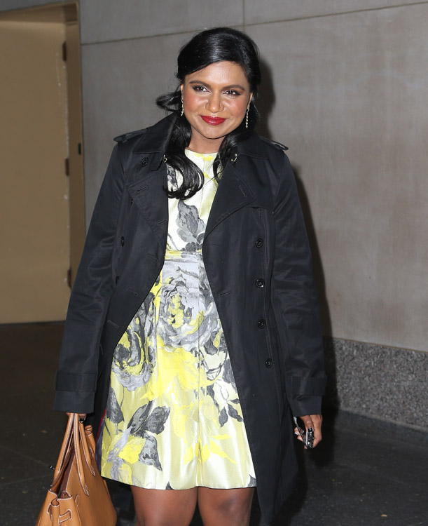 Mindy Kaling carries a tan Hermes Birkin in NYC (1)