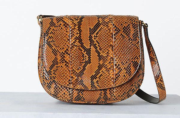 Celine Handbags Spring 2014 (3)