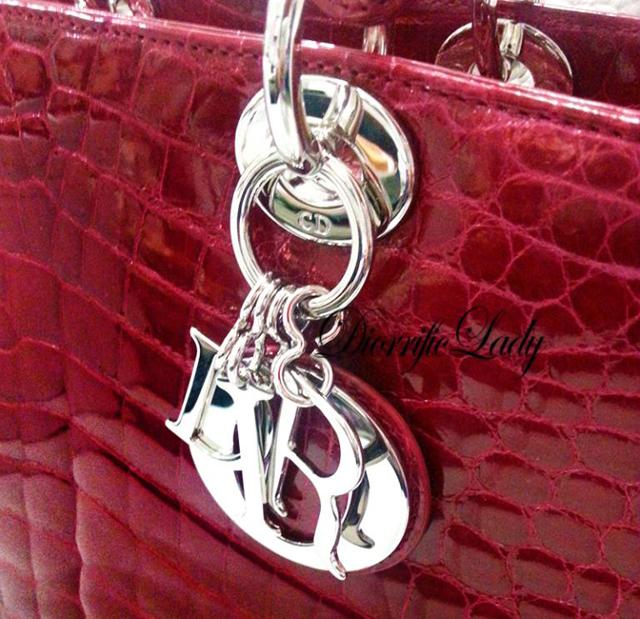 Dior Crocodile Bag
