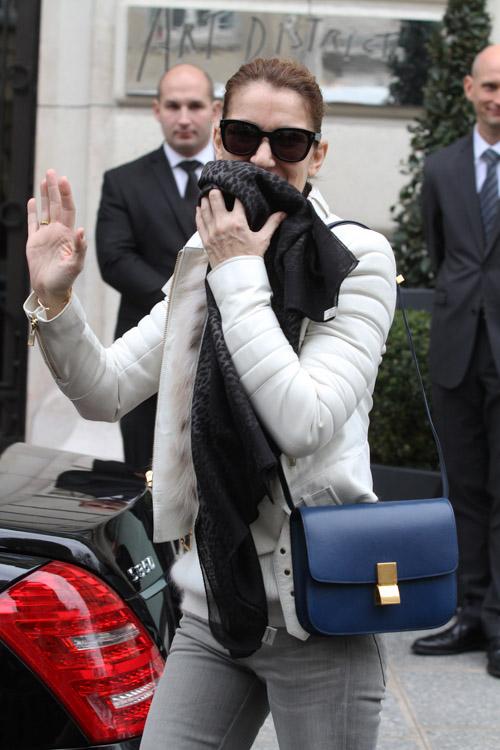 Celine Dion Celine Classic Box Bag-2